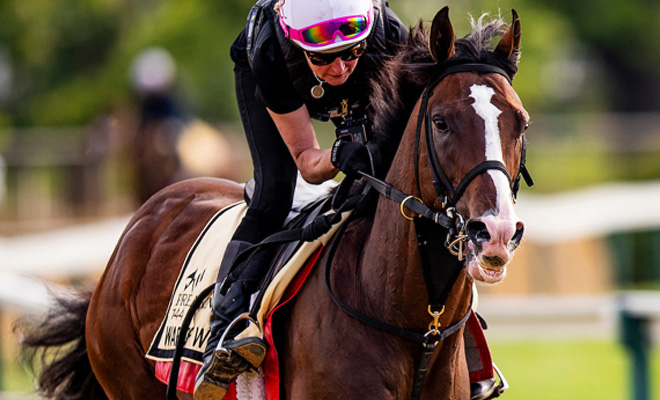 Watch Preakness Stakes Online Free Nbc Sports Live